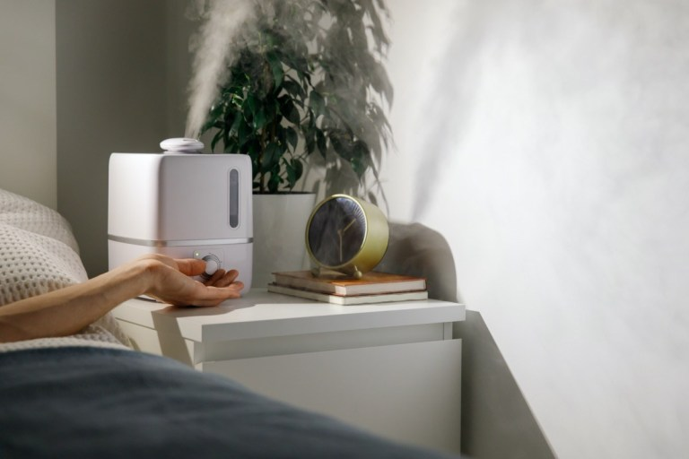 5 Reasons to Use a Humidifier In Your Home